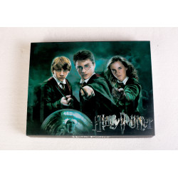 Harry Potter Wand Gift Set