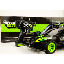 Turbo Savage RC Car