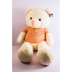 Teddy Bear with Sweater...